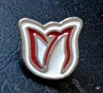 Parkinson Canada Lapel Pin IMG_5431